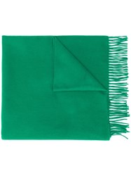 Begg And Co Fringed Cashmere Scarf Green