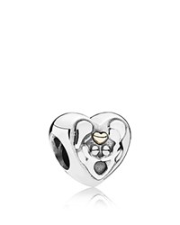 Pandora Design Pandora Charm 14K Gold And Sterling Silver Heart Of The Family Moments Collection