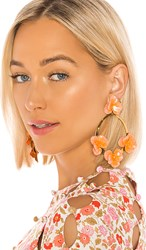 Jennifer Behr Voleta Hoop Earrings In Orange. Apricot