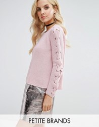 Miss Selfridge Petite Lattice Sleeve Jumper Pink