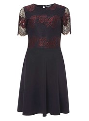 Dorothy Perkins Tall Navy And Berry 2 Tone Lace Skater Dress Blue