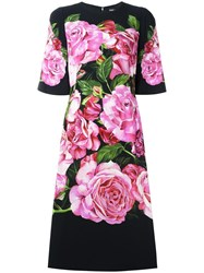 Dolce And Gabbana Rose Print Cady Dress Black