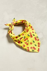 Urban Outfitters Uo Allover Cherry Bandana Gold