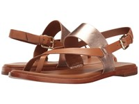Cole Haan Anica Thong Sandal Acorn Rose Gold Metallic Women's Dress Sandals Brown