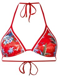 Dsquared2 Palm Tree Print Bikini Top