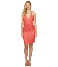 Adelyn Rae Suzanne Woven Lace Peplum Bodycon Coral Women's Dress