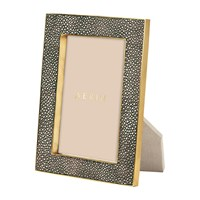 Aerin Chocolate Shagreen Frame 4X6