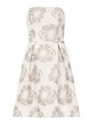Dorothy Perkins Luxe Floral Bandeau Prom Dress Metallic
