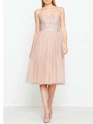 Needle And Thread Coppelia Ballet Tulle Dress Pink