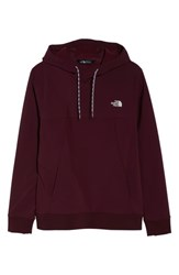 The North Face Tekno Fresh Hoodie Fig