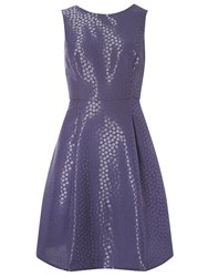 Dorothy Perkins Luxe Spot Prom Dress Navy