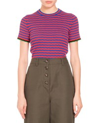 Proenza Schouler Striped Crewneck Cropped Tee Blue Coral