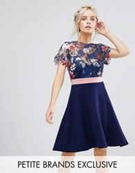 Paper Dolls Petite Floral Printed Lace Top Prom Dress Multi