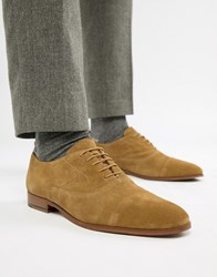 Kg By Kurt Geiger Oxford Shoes In Tan Suede