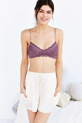 Pins And Needles Pins And Needles Chloe Lace Bralette Dark Purple