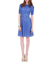 Kay Unger Embroidered A Line Day Dress Periwinkle
