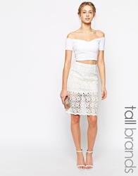 True Decadence Tall Sheer Lace Pencil Skirt White