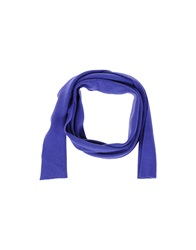 Pinko Oblong Scarves Purple