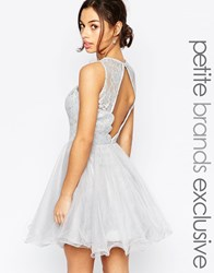Chi Chi Petite Chi Chi London Petite Lace Prom Dress With Open Scallop Back Grey