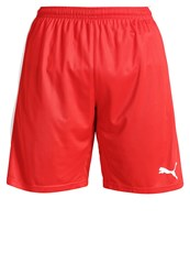 Puma Pitch Sports Shorts Red White