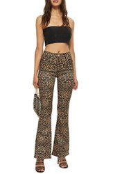 Topshop Moto Leopard Print Flare Jeans Brown Multi