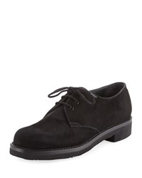 Gravati Lace Up Suede Oxford Black