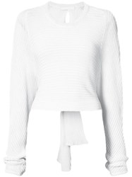 Dion Lee Ribbed Sweater White