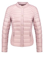Esprit Collection Down Jacket Old Pink Rose