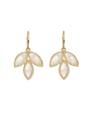 Irene Neuwirth Rainbow Moonstone And Yellow Gold Earrings