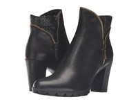 The Flexx Dip Body Black Cana Di Fucile Cashmere Stellato Women's Boots