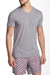 Mr. Swim Triblend V Neck Tee Gray