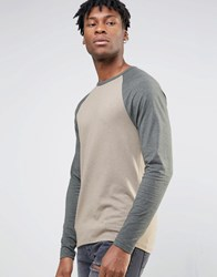 Asos Muscle Long Sleeve T Shirt With Contrast Raglan Brown Khaki