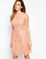 Warehouse Structured Lace A Line Dress Peach