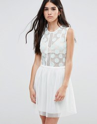 Traffic People Skater Dress With Polka Dot Mesh Top And Mesh Skirt Mint Blue