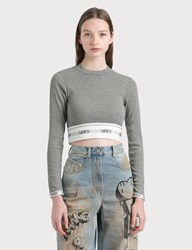 Aries Rib Crop Top Grey