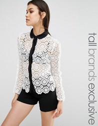 True Decadence Tall Allover Lace Applique Shirt With Contrast Trim Detail Cream