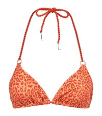 Lazul Leopard Print Triangle Bikini Top Multi