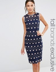 Paper Dolls Tall Pencil Dress With Contrast Floral Lace Navy