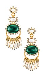 Elizabeth Cole Bonnie Earrings In Metallic Gold.