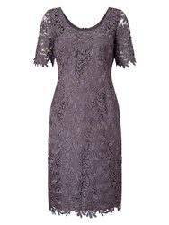 Jacques Vert Leaf Lace Dress Grey