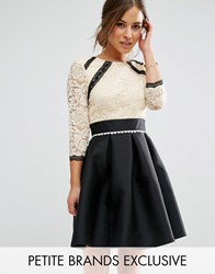 Little Mistress Petite 2 In 1 Lace Skater Dress With Contrast Skirt Multi
