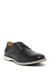 Adolfo Lace Up Shoe Black