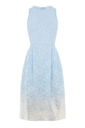 Warehouse Foil Lace Dress Light Blue