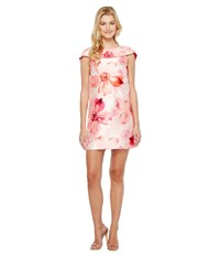 Tahari By Arthur S. Levine Floral Print A Line Dress Ivory Petal Fuchsia Women's Dress White