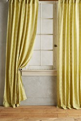 Anthropologie Quadrille Curtain Chartreuse