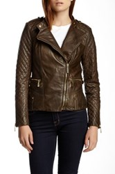 Vince Camuto Quilted Moto Genuine Leather Jacket Green