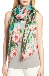 Ted Baker London Nectar Long Silk Scarf Pale Green