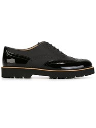 Hogan 'Route H259' Oxford Shoes Black