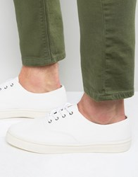 New Look Canvas Plimsolls In White White