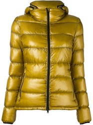 Herno Padded Jacket Green